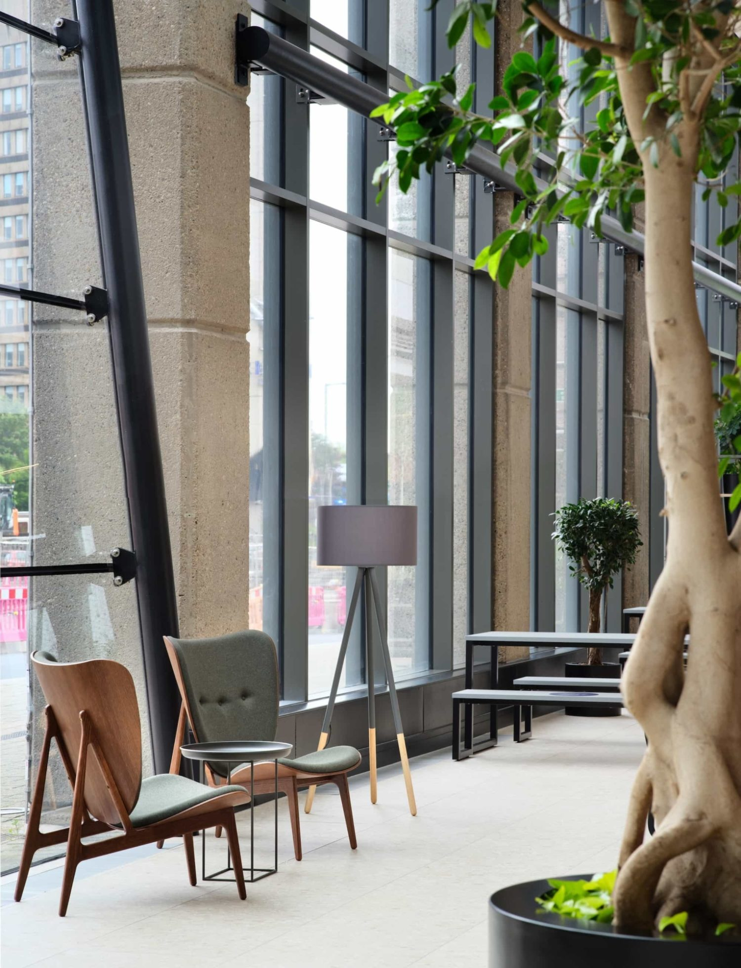 office trees and plants in reception