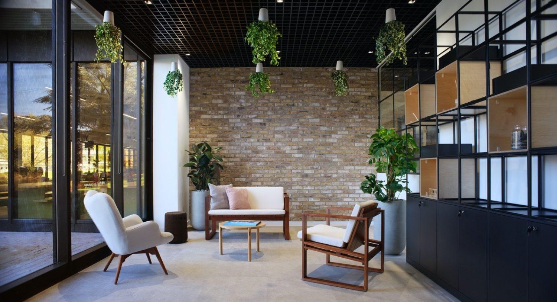Bottomline office plant ideas