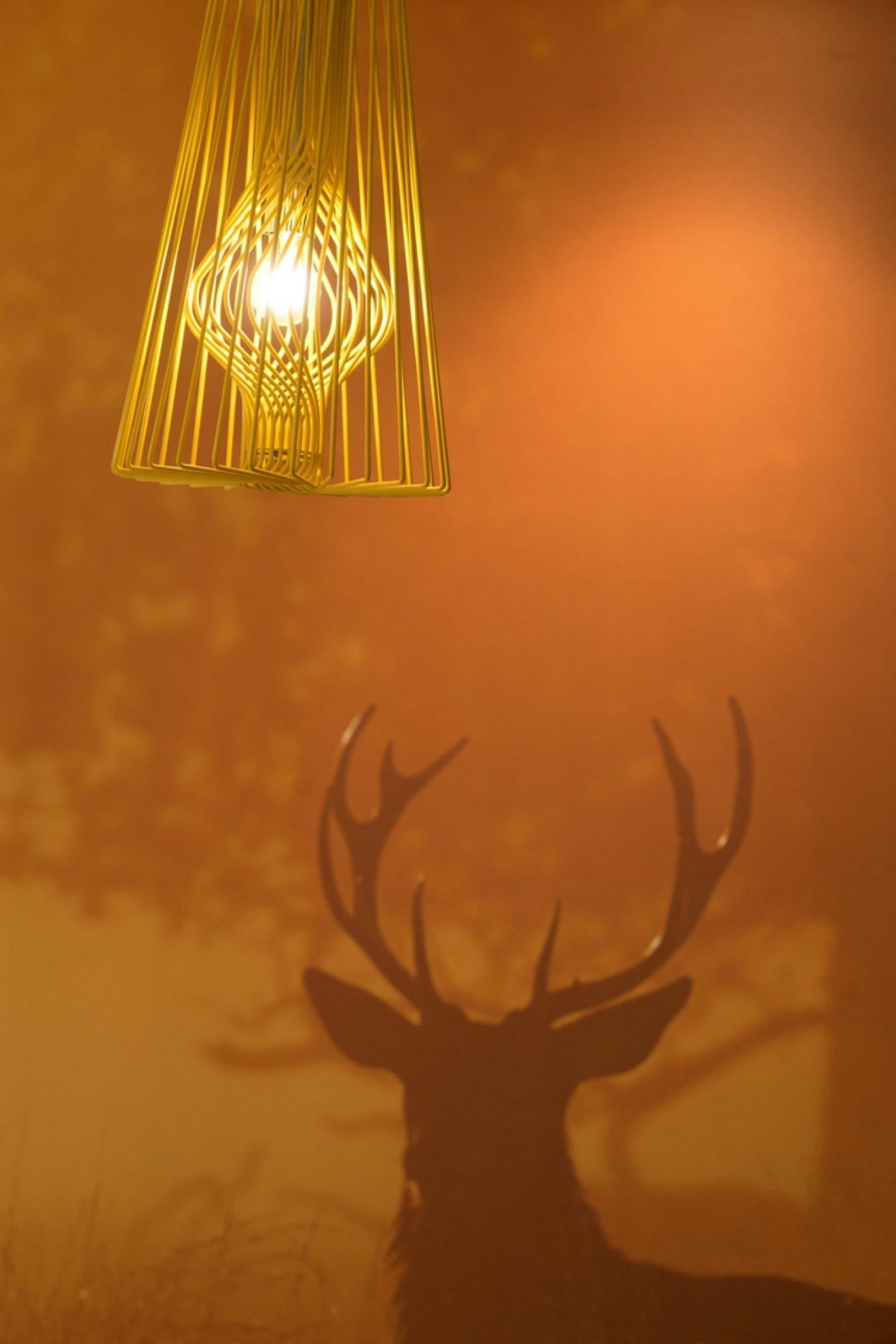 Deer drawing agile office design