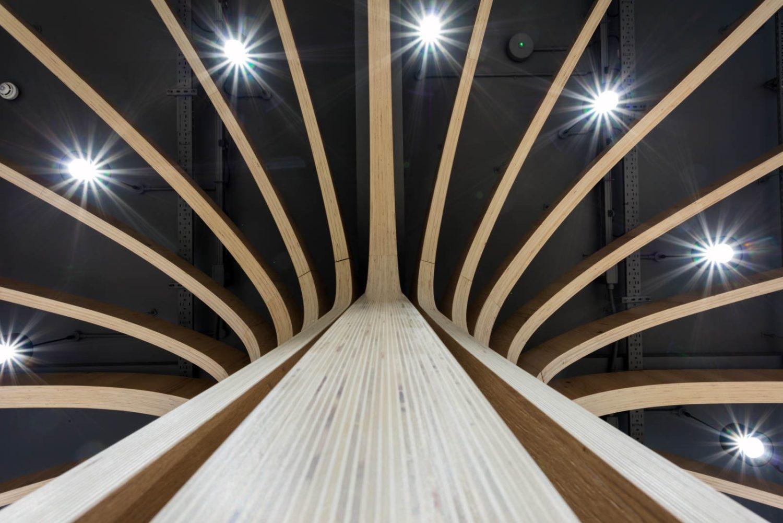 Morgan Sindall tree ceiling biophilia office design