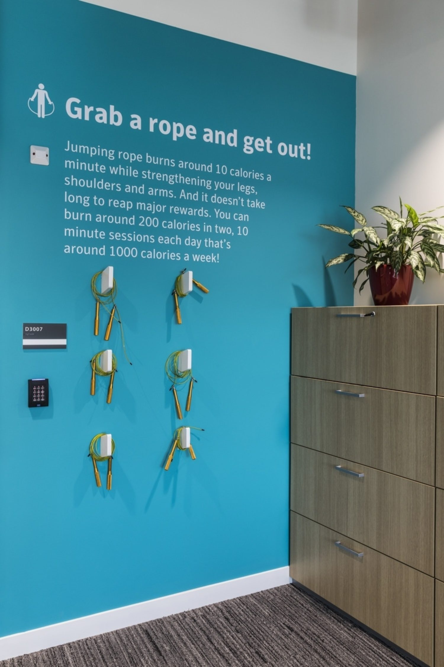 Symantec's office design for wellbeing with jump ropes