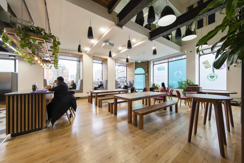 Biophilic design office breakout area