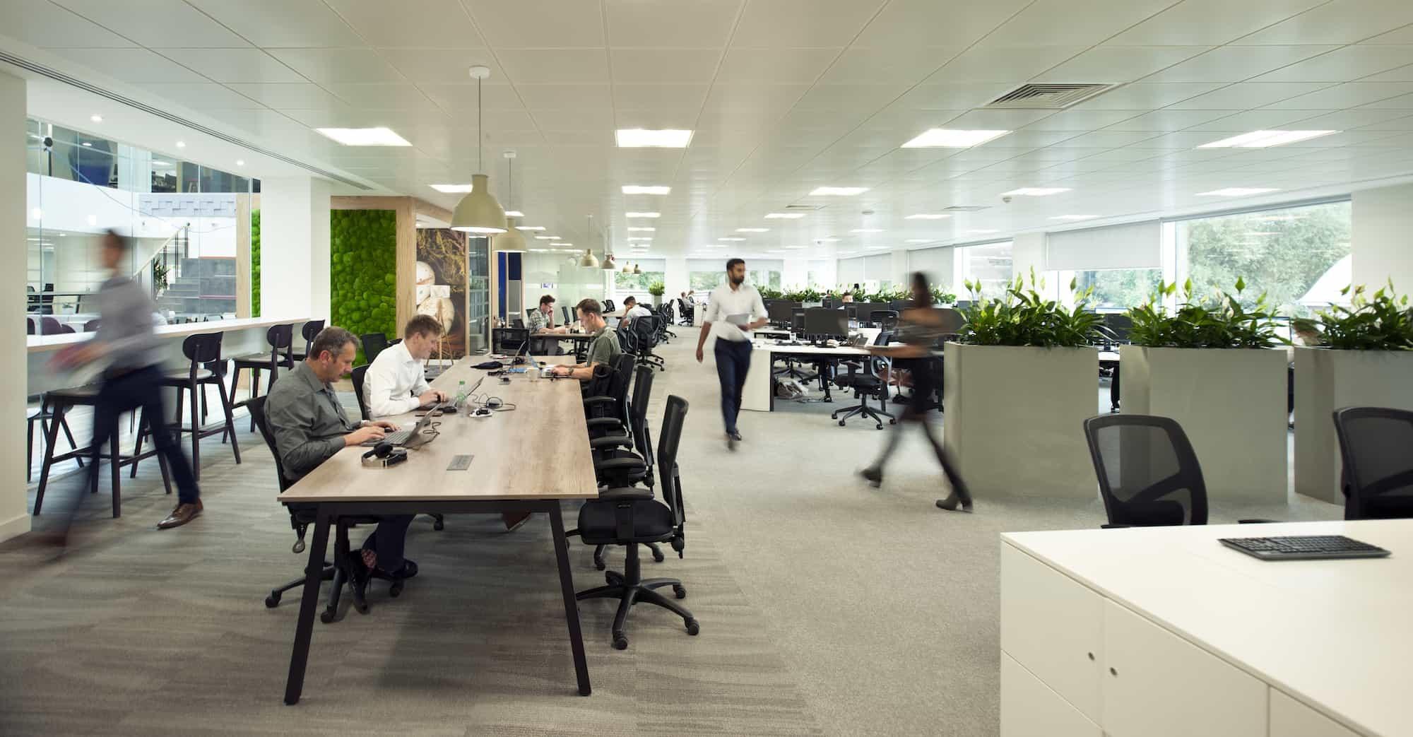 Open plan biophilic office design