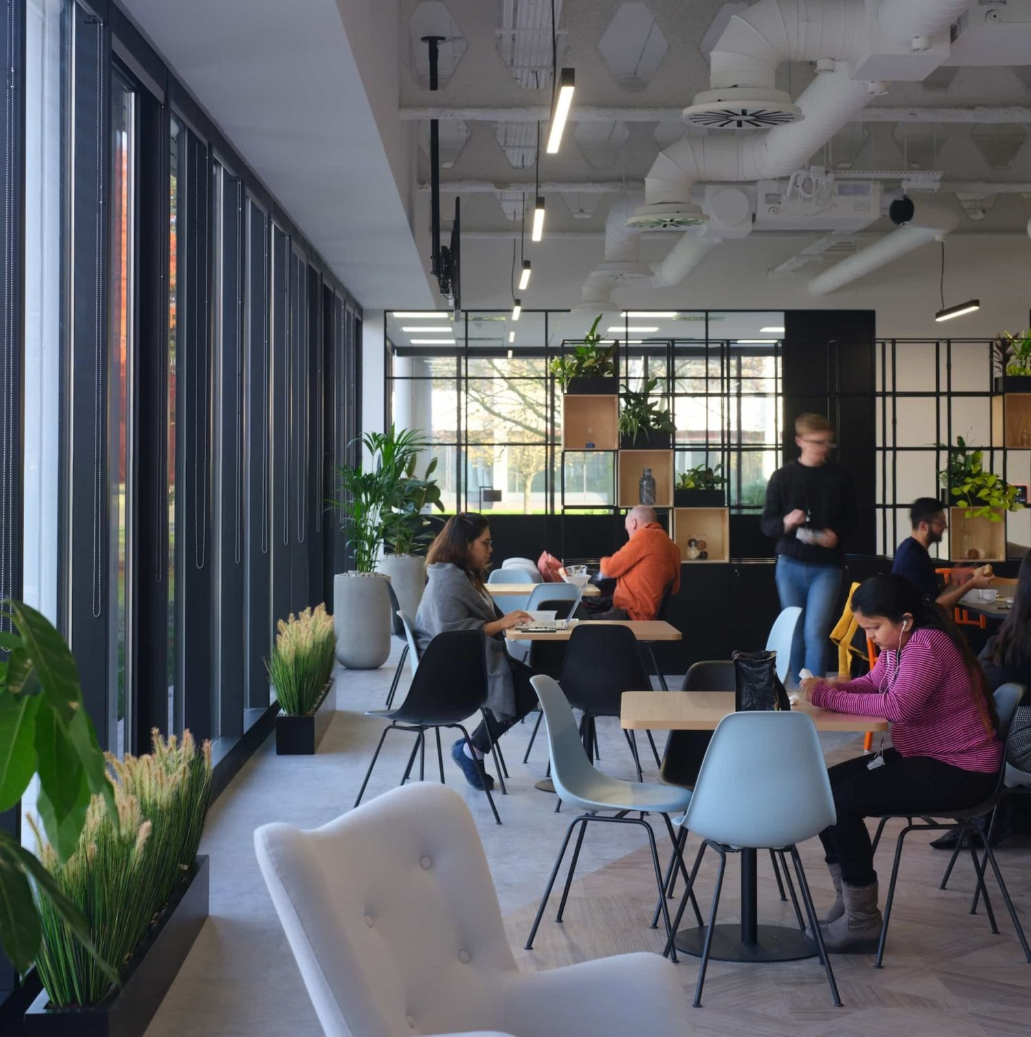 Busy breakout area with biophilia