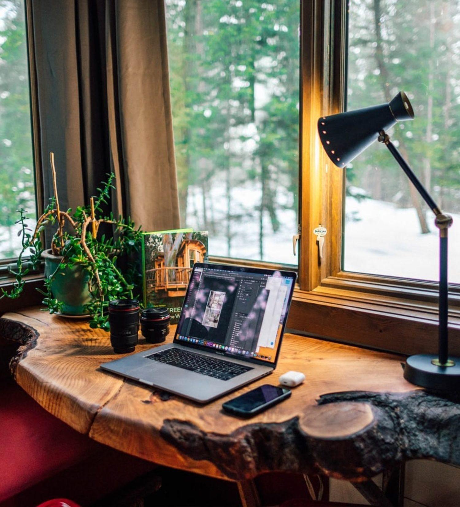 Biophilic design in a home office