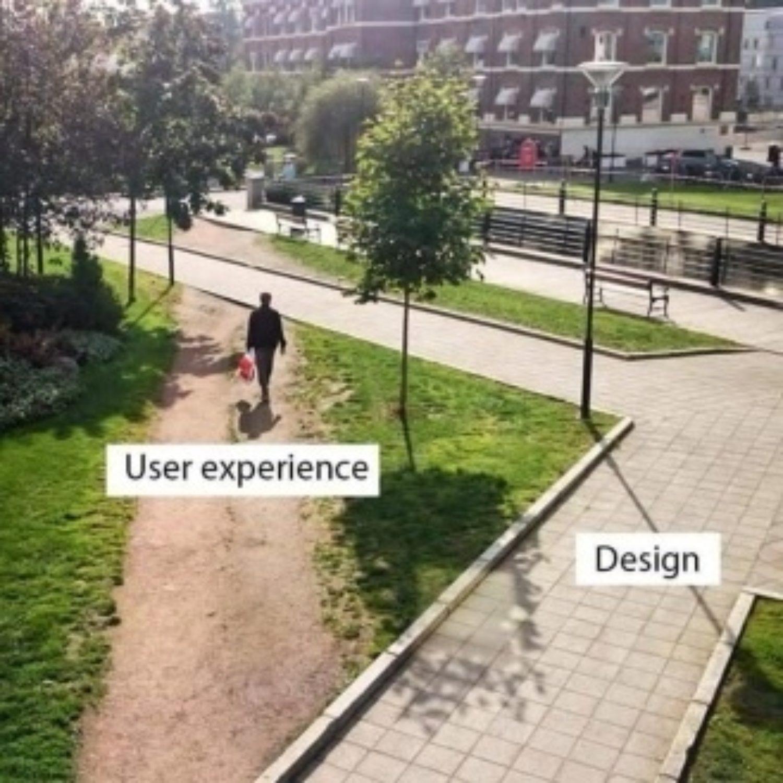 Morgan Lovell user experience vs design