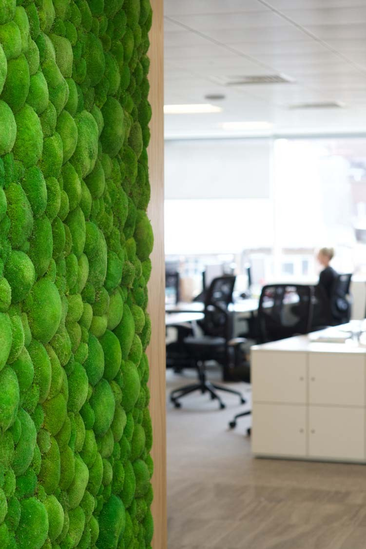 Living wall in biophilic design wellbeing